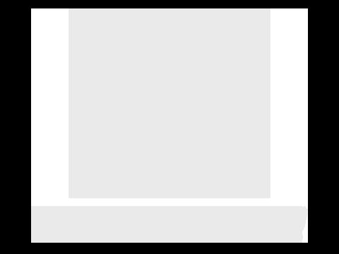 Ron Voyage logo